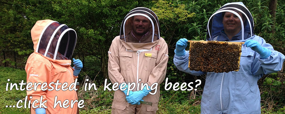 Manchester and District Beekeepers Association - Train To Be A Beekeeper