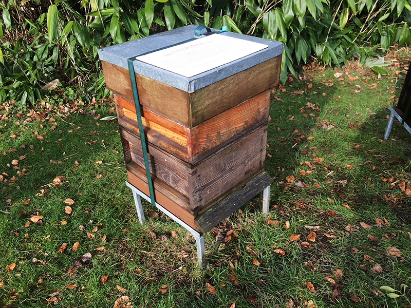 Hive information - basic types of modern or movable hives in